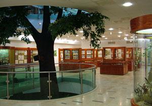 Kultúrális programok, múzeumok